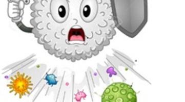 És el moment de reforçar el nostre sistema immunitari