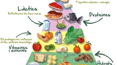 La importància d'aconseguir una nutrició òptima