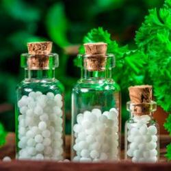 Consell homeopàtic i fitoteràpia