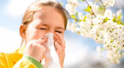 Consejos para sobrevivir a la época de alergias