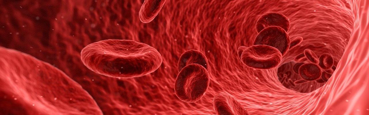 """<p><span style=""""color:#FFFFFF;"""">Disponemos de nuevo servicio: analisis completo de </span></p>  <p><span style=""""color:#FFFFFF;"""">colesterol (total, HDL, LDL, triglicéridos) y hemoglobina </span></p>  <p><span style=""""color:#FFFFFF;"""">glicosilada.<"""